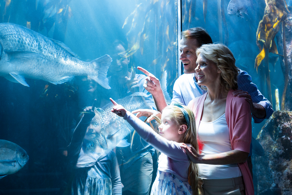 aquariums with the kids