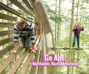 Go-Ape-Day-Out-Adventure