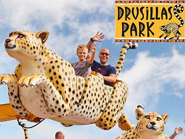 Drusillas Park Safari Ride
