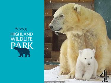Highland-Wildlife-Park-Vouchers