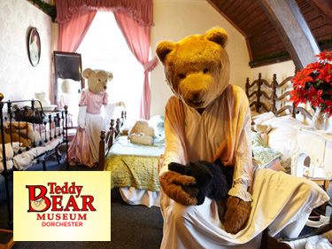 The Teddy Bear Museum in Dorset