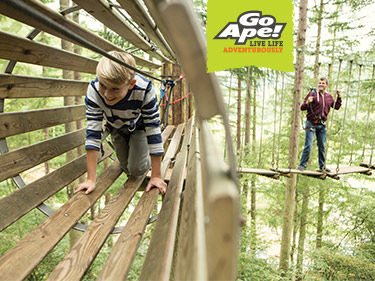 Go Ape Bank Holiday Day Out