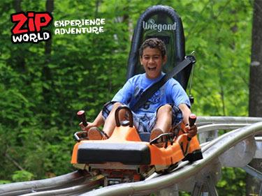 Fforest Coaster Fun at Zip World Snowdonia