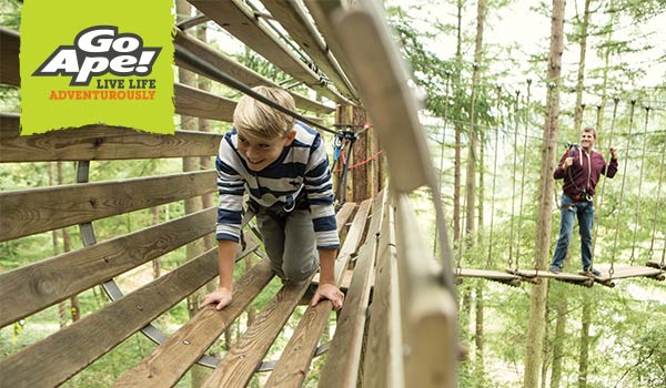 Go Ape Delamere Forest Cheshire Day Out