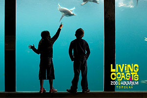 Living Coasts Aquarium Day Out for Kids